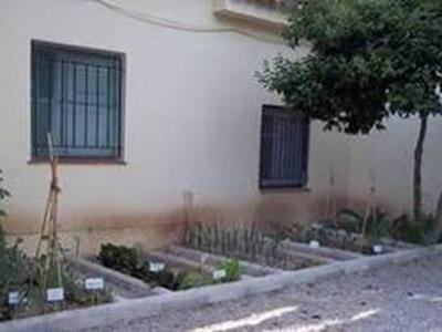 Huertos ecológicos escolares de Pon Aragón en tu mesa en Calatayud-Aranda.