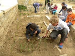 Huertos escolares CEDER Monegros