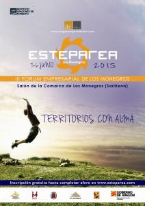 Cartel Esteparea 2015