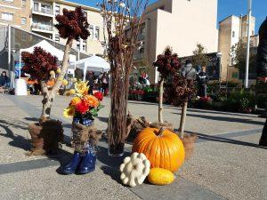 florart-mercado-agroecologico-3