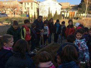 huerto-escolar-en-almunia-de-san-juan